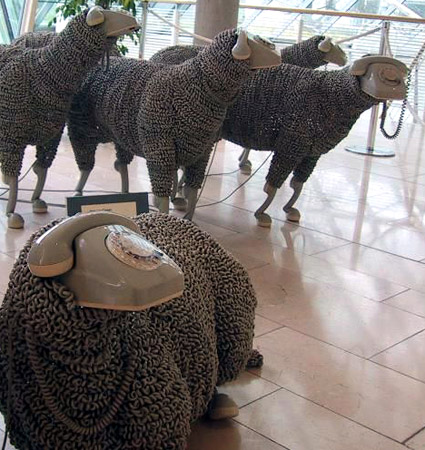 telephone cord sheeps